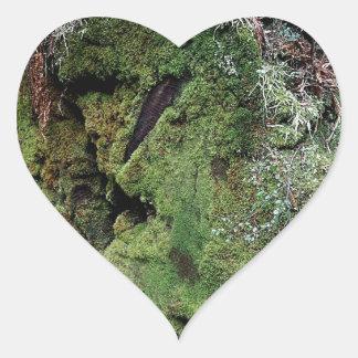 Musgo en secoya caida pegatina en forma de corazón