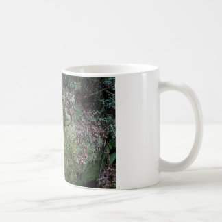 Musgo en secoya caida taza básica blanca