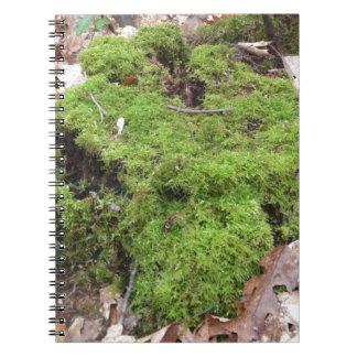Musgo en un tronco de árbol libro de apuntes con espiral
