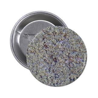Musgo gris en superficie rocosa pin