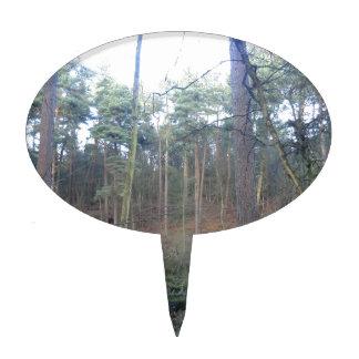 Musgo negro en el bosque de Delamere, Cheshire Decoración Para Tarta