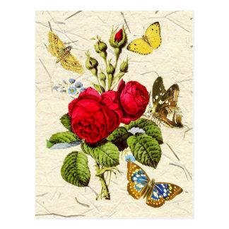Musgo rojo subió con las mariposas coloridas tarjetas postales