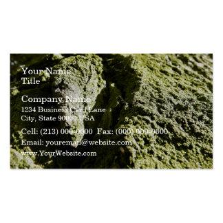 Musgo verde claro en tronco de árbol tarjeta de negocio