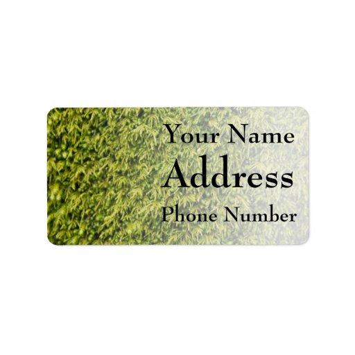 Musgo verde etiquetas de dirección