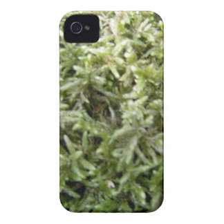 Musgoverde iPhone 4 Case-Mate Cárcasa