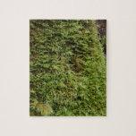 Musgo verde rompecabeza con fotos