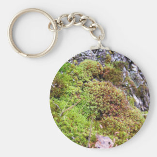 Musgo y granito llavero redondo tipo pin