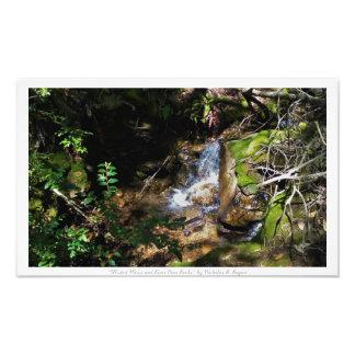 """""""Musgo y río de Misted sobre rocas,"""" decoración de Fotografía"""