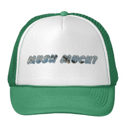 Mush Much? Mesh Hat