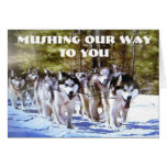 MUSHING OUR WAY TO YOU BIRTHDAY GREETING CARD