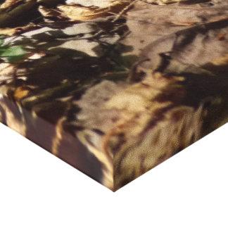 Mushrom&Fir Canvas Print