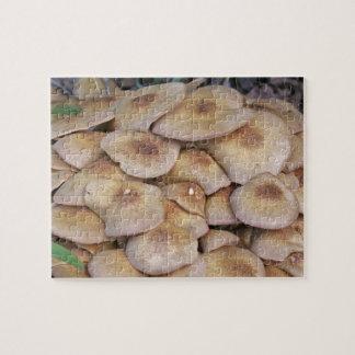 Mushroom2 Puzzle