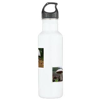 Mushroom 06 and 07 water bottle