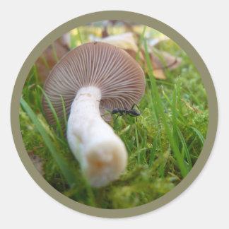 Mushroom & Ant Classic Round Sticker