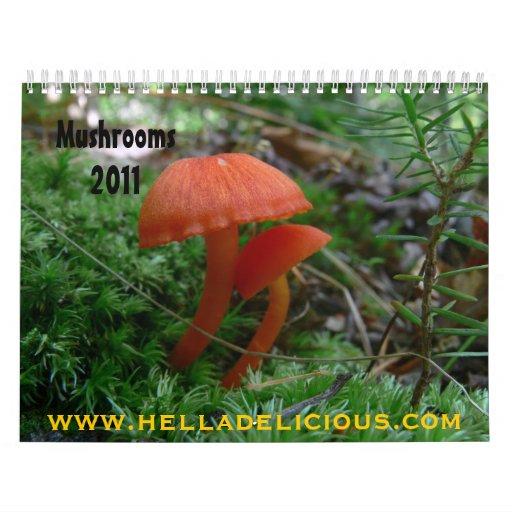 Mushroom Calendar 2011