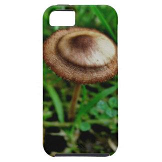 Mushroom iPhone 5 Covers