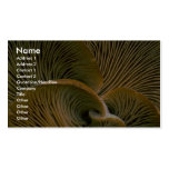 Mushroom cluster on a dead tree Double-Sided standard business cards (Pack of 100)