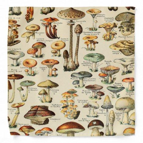 Mushroom Collection Bandana