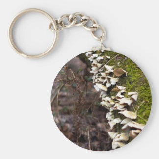 mushroom_downed tree_moss_winter keychain
