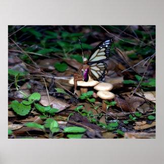 Mushroom Fairy Posters