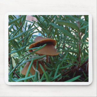 Mushroom Forest Mouse Pad