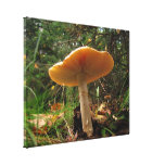 Mushroom Giant Canvas Print