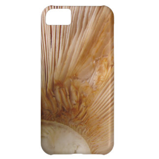 Mushroom gills cover for iPhone 5C