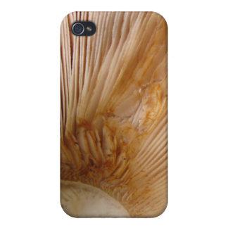 Mushroom gills iPhone 4 cover