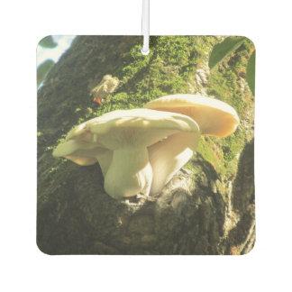 Mushroom Growing in Tree Car Air Freshener