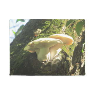 Mushroom Growing in Tree Doormat