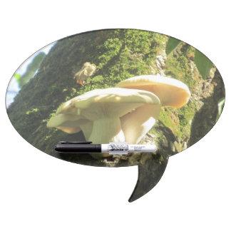 Mushroom Growing in Tree Dry Erase Whiteboard