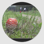 Mushroom In The Grass Sticker