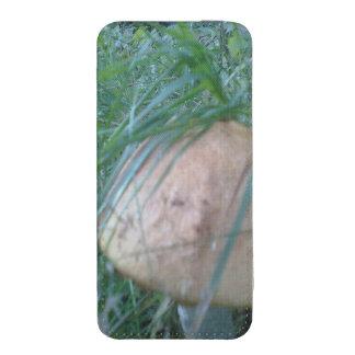 Mushroom. iPhone 5 Pouch