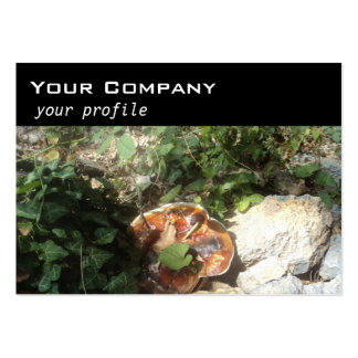 mushroom ,ivy ,stones large business cards (Pack of 100)
