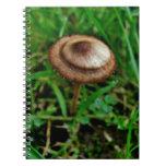 Mushroom Journals