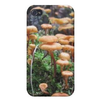 Mushroom lovers iPhone case