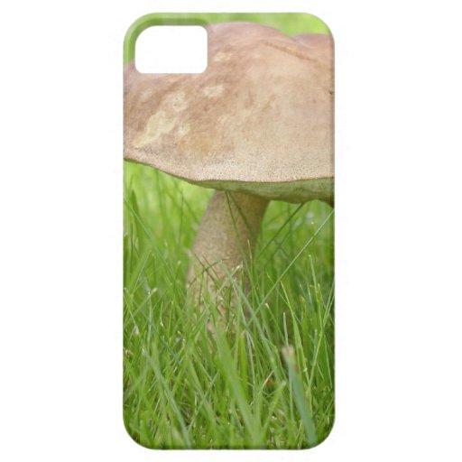 Mushroom Meadow Field iPhone 5 Cases