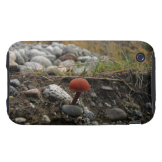 Mushroom on a Rocky Bank Tough iPhone 3 Cover