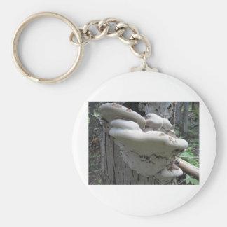 mushroom on a tree keychain