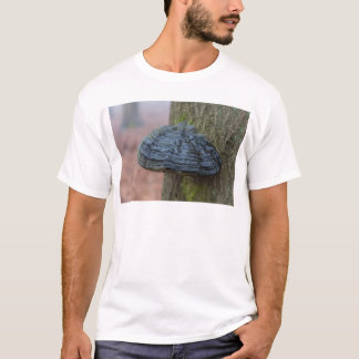 Mushroom on a tree trunk in the forest T-Shirt