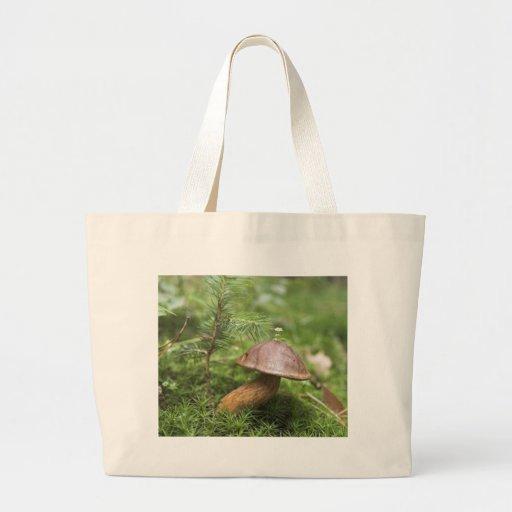 Mushroom On Moss Bags
