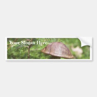 Mushroom On Moss Car Bumper Sticker