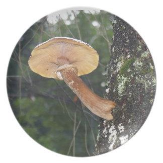 Mushroom on Tree Trunk Plate