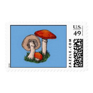 Mushroom Painting Postage
