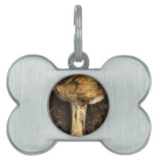 mushroom pet name tags