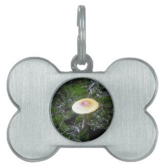 mushroom pet tag