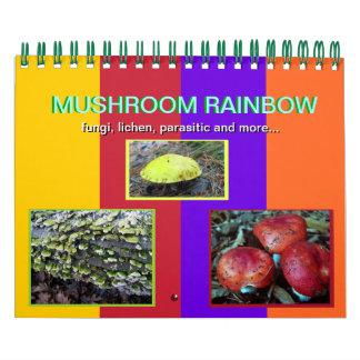 Mushroom Rainbow 2013 calendar