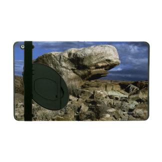 Mushroom Rock iPad Case