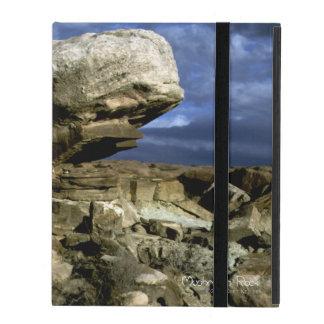 Mushroom Rock iPad Folio Case