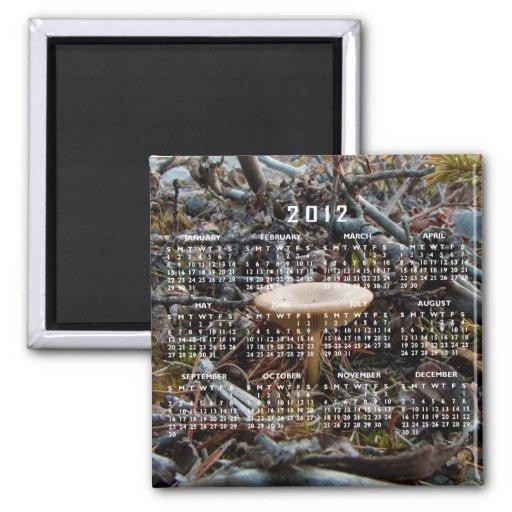 Mushroom Stretch; 2012 Calendar 2 Inch Square Magnet